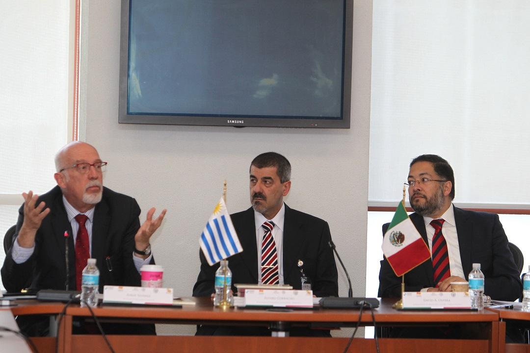 XIX Reunión de Representantes ante la RADI - Resultados