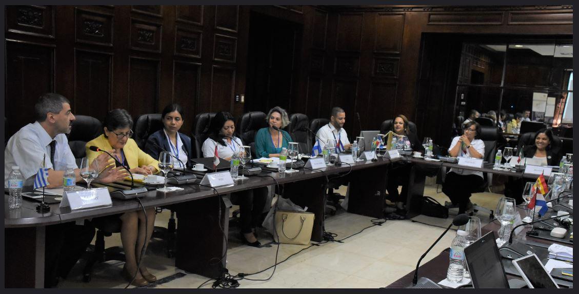 XXI Reunión de Representantes ante la RADI